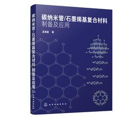 碳纳米管/石墨烯基复合材料制备及应用
