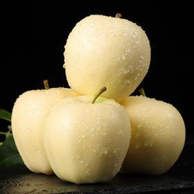 金帅苹果 香甜多汁 芳香怡人 一口下去都是爱 5斤装