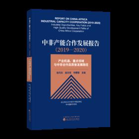 中非产能合作发展报告(2019—2020)——产业机遇、重点领域与中非合作高质量发展路径