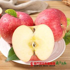 【珠三角包邮】农匠 礼盒精选红富士(新苹果)8斤±3两/箱(9月26日到货)