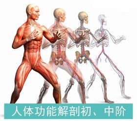 人体功能解剖初、中阶培训班  10.23-29  武汉  YXYD