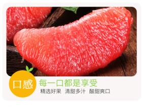 【珠三角包邮】100斤山东红富士苹果+100个梅州蜜柚+5盒水果礼盒  (9月27日到货)