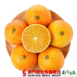 【全国包邮】爱媛38号果冻橙(72小时之内发货)