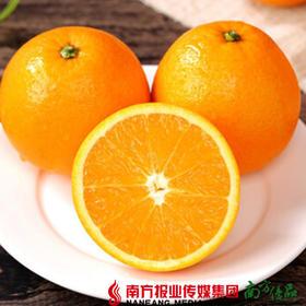 【珠三角包邮】澳洲进口橙礼盒 6斤±3两/箱 (9月26日到货)