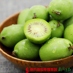 【珠三角包邮】丹东软枣奇异莓 125g±20g/盒 4盒/份(9月26日到货)