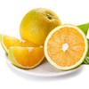 商品兑换丨鲜美香甜·九月红宝宝橙子丨可以喝的宝宝橙 汁多肉嫩 细腻甜润 酸甜可口 产地现摘新鲜直达 商品缩略图4
