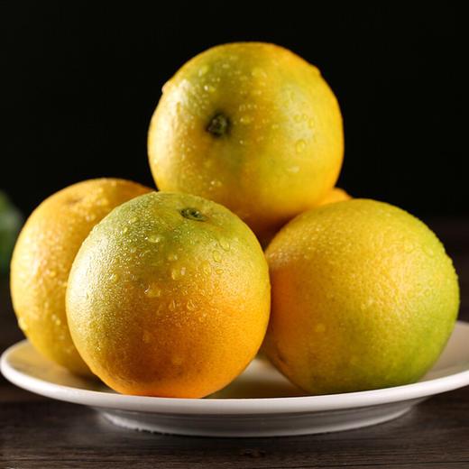 商品兑换丨鲜美香甜·九月红宝宝橙子丨可以喝的宝宝橙 汁多肉嫩 细腻甜润 酸甜可口 产地现摘新鲜直达 商品图3