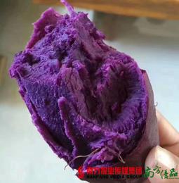 【全国包邮】山东沂蒙山紫罗兰紫薯 5斤±50g/箱(72小时内发货)