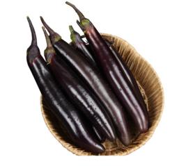 【时令蔬菜】长茄子500g±20g