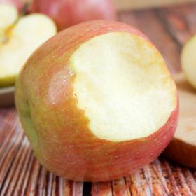 陕西红富士苹果 甜蜜多汁 果香浓郁 皮薄肉厚 带箱5斤装/带箱10斤装