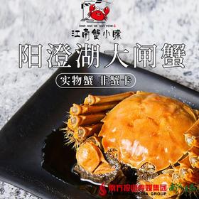 【全国包邮】江南蟹小朦大闸蟹(72小时内发货)