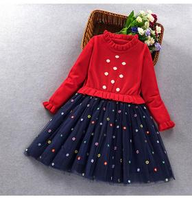 ALBL2020新款时尚洋气圆领长袖上衣网纱印花公主裙两件套TZF