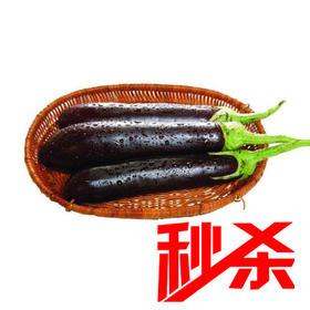 秒杀【时令蔬菜】长茄子500g±20g