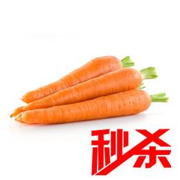 秒杀【时令蔬菜】胡萝卜500g±20g