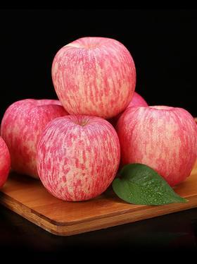 烟台红富士苹果80mm5斤整箱一级铂金大果 生鲜 新鲜水果 孕妇可食