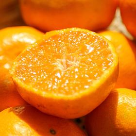 [涌泉蜜橘]肉质脆嫩 风味浓郁 也称涌泉蜜桔/临海蜜桔 | 基础商品