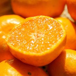 [涌泉蜜橘]肉质脆嫩 风味浓郁 也称涌泉蜜桔/临海蜜桔