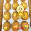 【珠三角包邮】四川金艳奇异果(黄心一级)1.8斤±3两/箱(10月26日到货) 商品缩略图0