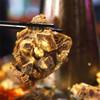 煲得鲜88元羊蝎子套餐 喝汤吃肉还能吸骨髓 入秋补身子 超值! 商品缩略图1