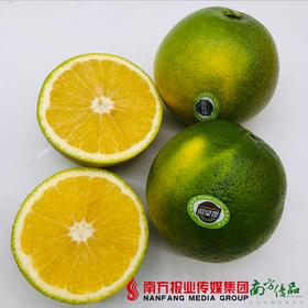 【珠三角包邮】盈香园 哀牢山3000橙中大果 10-11斤/箱(次日到货)