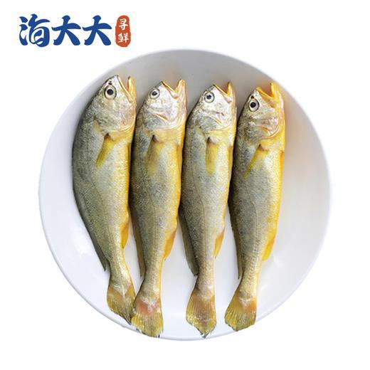 【江浙沪包邮】舟山野生捕捞冰鲜小黄鱼 49.9元 2斤 10-12条/斤 商品图2