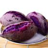 【山东 • 紫薯】营养粗粮 粉糯无丝 含天然花青素及多种矿物元素 氨基酸 维生素 商品缩略图2