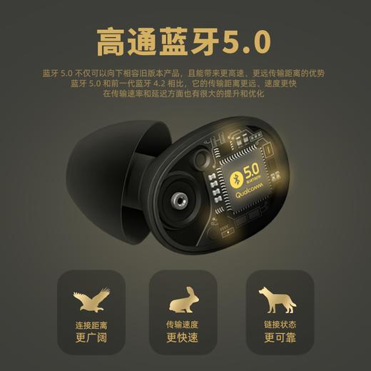 mfish黑鱼Tws真无线蓝牙耳机高通5.0双耳迷你运动入耳耳机 商品图2