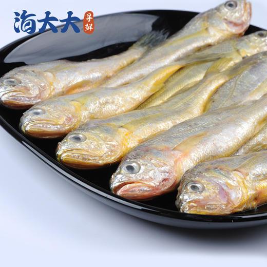 【江浙沪包邮】舟山野生捕捞冰鲜小黄鱼 49.9元 2斤 10-12条/斤 商品图1