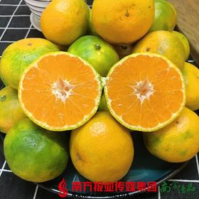 【全国包邮】壹品爆橘 5斤±5两/箱 (普通装) (72小时内发货)