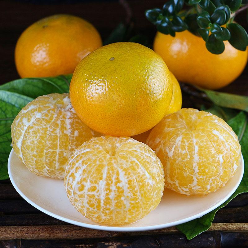 上新   广西皇帝柑  新鲜水果  清甜爽口 皮薄多汁 现摘现发 商品图5