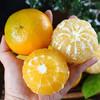 上新   广西皇帝柑  新鲜水果  清甜爽口 皮薄多汁 现摘现发 商品缩略图3