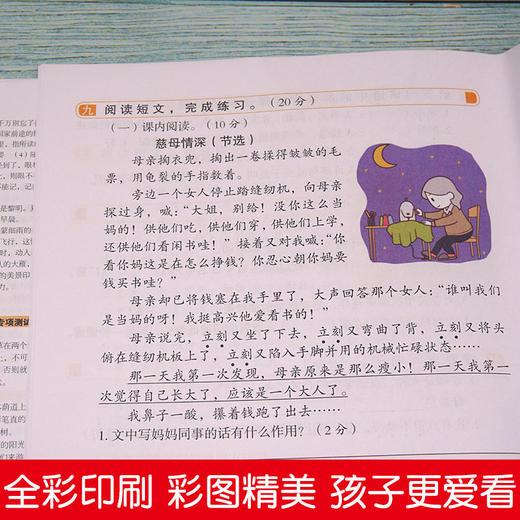 【开心图书】1-6年级上册语数英开心彩绘卷全系列 商品图4