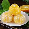 上新   广西皇帝柑  新鲜水果  清甜爽口 皮薄多汁 现摘现发 商品缩略图2