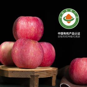 【功夫苹果】等了六年才能吃到的苹果!果香四溢,爆甜爽脆!对标日本青森苹果种植,全程有机可溯源,味道完胜名扬世界的青森苹果!高端年货礼盒,顺丰极速发货,春节送礼就要与众不同!