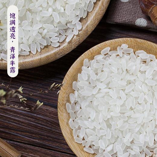 龙米家与MAP合作款小站稻8罐装礼盒 商品图3