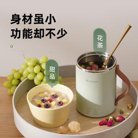 mokkom磨客 桌面养生杯多功能办公室迷你电炖煮茶煮粥神器烧水1人食