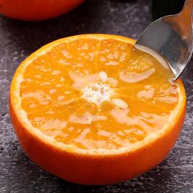 湖北宜昌红美人柑橘  新鲜当季现摘现发  酸甜多汁  多规格可选