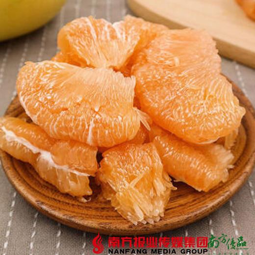 【珠三角包邮】启航 梅州黄金蜜柚 2.5斤-3.5斤/个 2个/份(次日到货) 商品图4