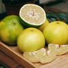 [平和葡萄柚] 皮薄多汁 清甜爽口    4-6个/箱(净重4.5-5斤) 商品缩略图0
