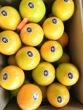 【限时特价】水润爆汁!云南冰糖脐橙10斤礼盒装,清甜入心,超好吃!