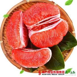 【全国包邮】福建红心柚 5斤±3两/箱(72小时内发货)