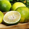 [平和葡萄柚] 皮薄多汁 清甜爽口    4-6个/箱(净重4.5-5斤) 商品缩略图6