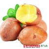 【全国包邮】红皮土豆 净重4.8-5斤/箱(72小时内发货) 商品缩略图1