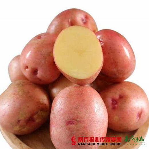 【全国包邮】红皮土豆 净重4.8-5斤/箱(72小时内发货) 商品图0
