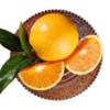 助农 | 秭归脐橙纽荷尔香橙 不打蜡 果肉饱满多汁 果园现摘现发 商品缩略图5