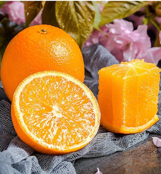 精选 | 秭归脐橙纽荷尔香橙 不打蜡 果肉饱满多汁 果园现摘现发 商品图0