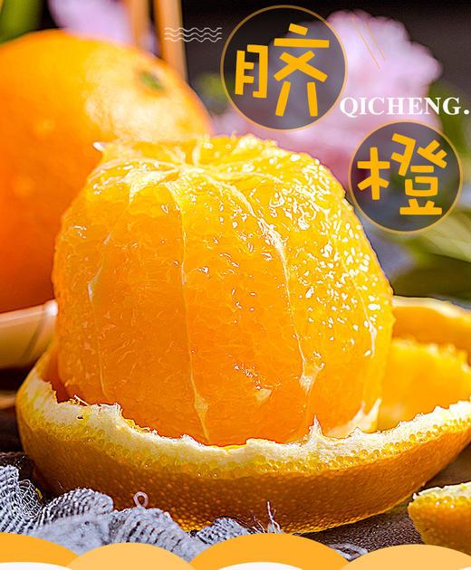 助农 | 秭归脐橙纽荷尔香橙 不打蜡 果肉饱满多汁 果园现摘现发 商品图4