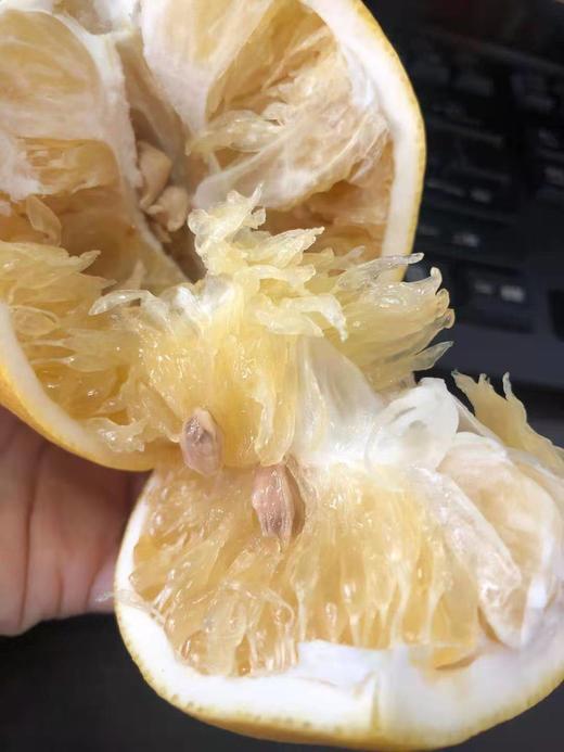 【半岛商城】台湾葡萄柚 7-9枚约9斤 几乎纯甜,略带一丢丢果酸 商品图2