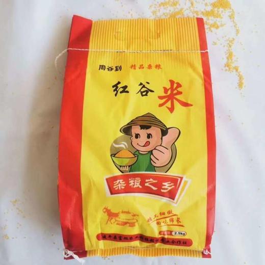 【半岛商城】朝阳红谷小米 5斤装 粗粮小米中的上等品 特别适合孕妇孩子喝 商品图1