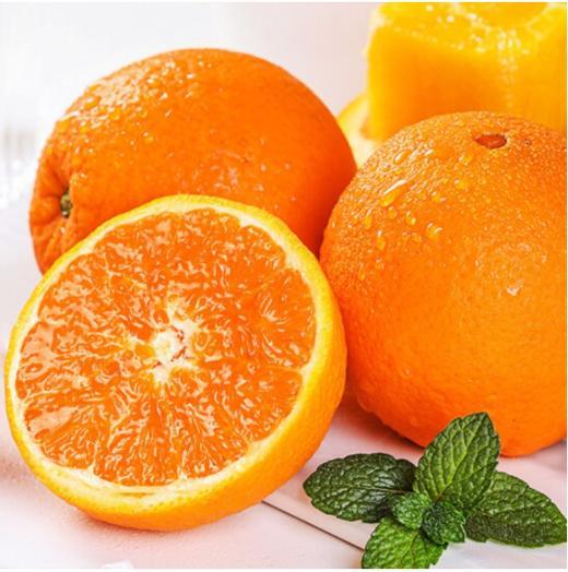 秋橙九月红果重9斤/箱 商品图1